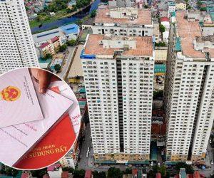 4 trường hợp thu hồi giấy chứng nhận quyền sử dụng đất đai mới nhất 2019